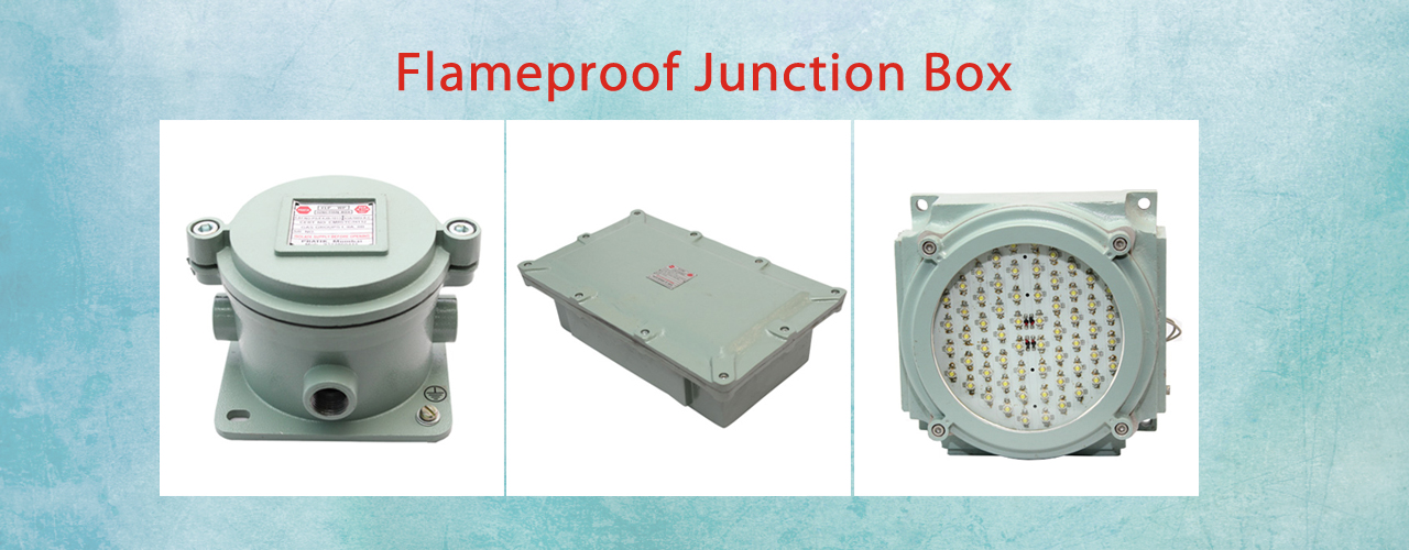 Flameproof Light Fittings  Flameproof Control Gears